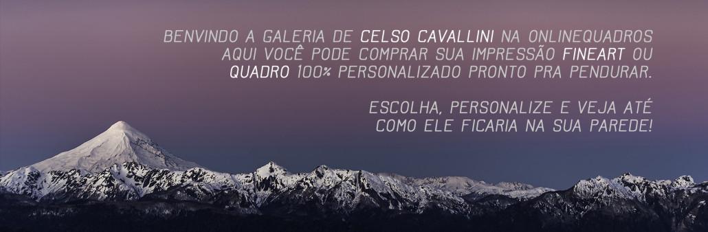 Fotos Celso Cavallini e Online Quadros (10)