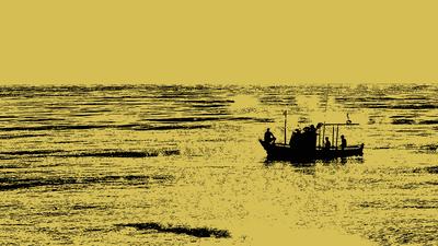Barcos Cor  007 Duayer