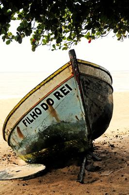 Barcos Cor 009 Duayer