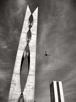 Os pombais de Brasília