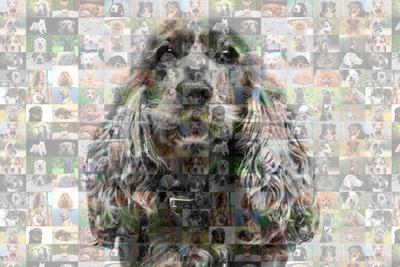 Cachorro de perfil em mosaico 04