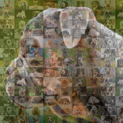 Cachorro de perfil em mosaico 10