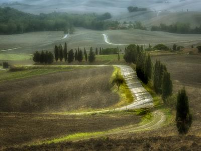 Série Toscana - Val D'Orcia
