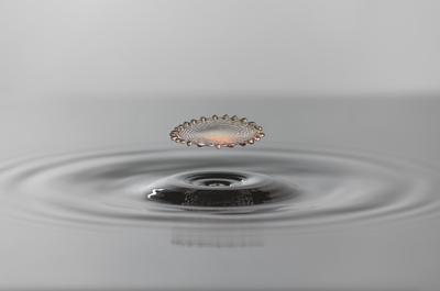 Série Gotas - Flor de água