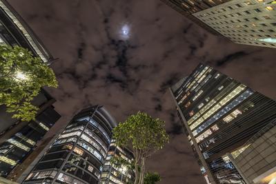 Série São Paulo - Noturna de edifícios na capital I