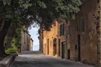 Série Toscana - Caminhos de Montalcino II