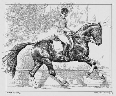 BLACK HORSE II