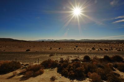 Calico_Desert_01