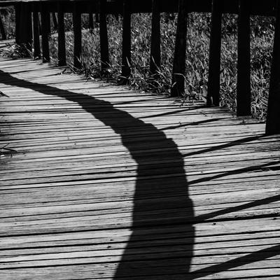 sombras na passarela
