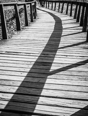 sombras na passarela_3