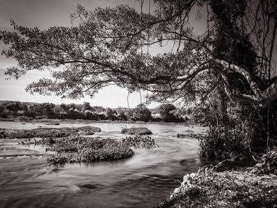 pedaço de rio