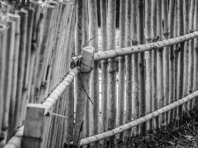 cerca de bambu_3