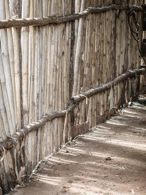 cerca de bambu_4