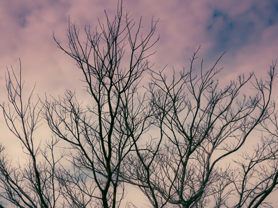 copa sob ceu nublado