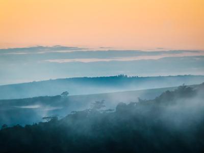 névoa ao amanhecer