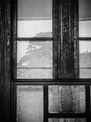 através da janela_em