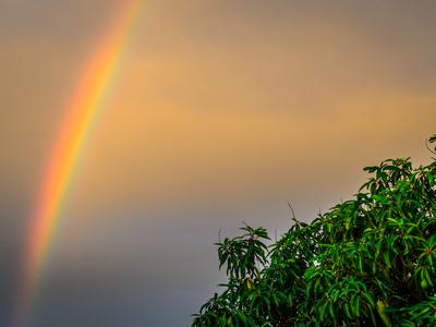 arco iris sobre copa