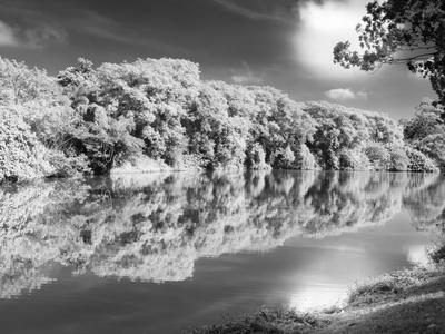 lago ibirapuera infrared