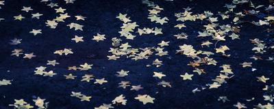 chão de estrelas_em