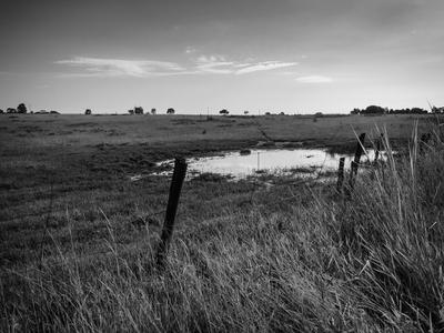paisagem rural 150_2