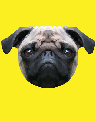 Pug Yellow