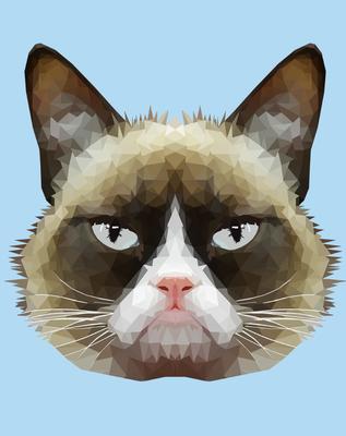 Cat Poly