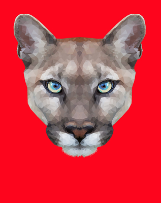 Lince Low Poly