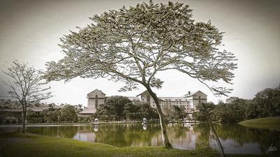 Grande Hotel Termas de Araxá...