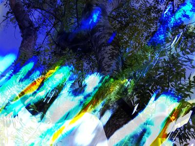 Abstrato Intensa Visão Artista Gloria Rimes