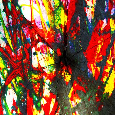Abstrato Explosão de Cores Artista Gloria Rimes