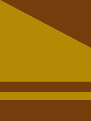 Geométrico EMOÇÕES N°9 Artista Gloria Rimes