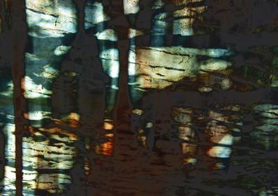 Abstrato Traços da Terra Artista Gloria Rimes