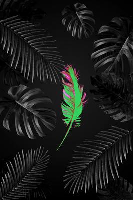 Floral_especial1
