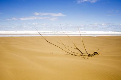 Praia Floripa