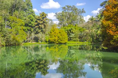 Lago paraíso  - MG
