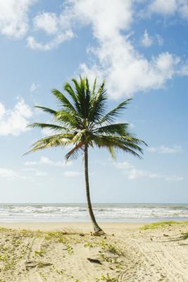 Praia Atalaia - SE