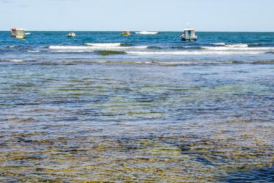 Águas da Bahia