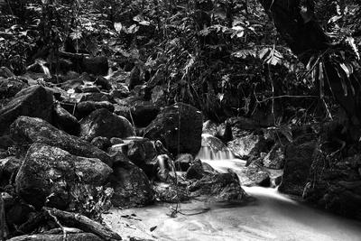 Cachoeira VII
