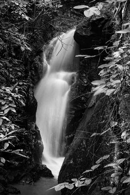 Cachoeira na Mata