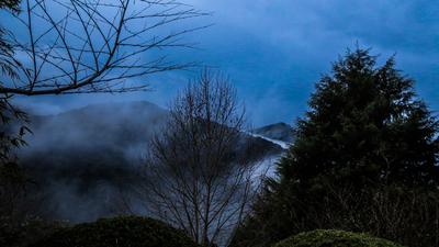 Neblina Pinhalense