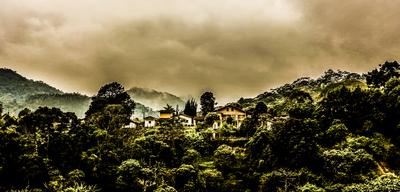 Bucólica - Santo Antônio do Pinhal - SP