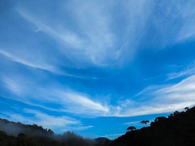Nuvens e Araucárias