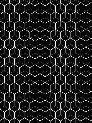 Hexagon Branco