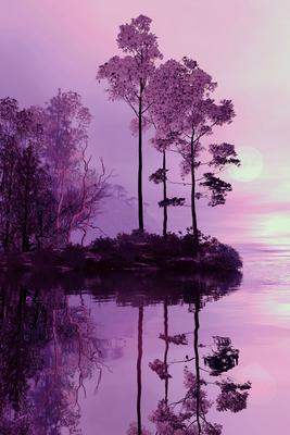 Floresta Púrpura