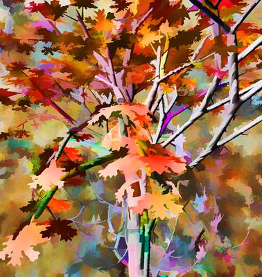 Árvore no Outono 2