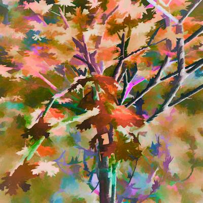 Árvore Outonal 5
