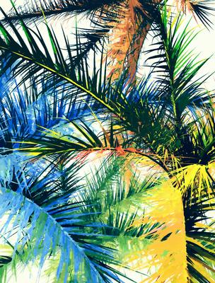 Folhagem Tropical 15