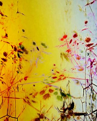 Flores e Folhas 2