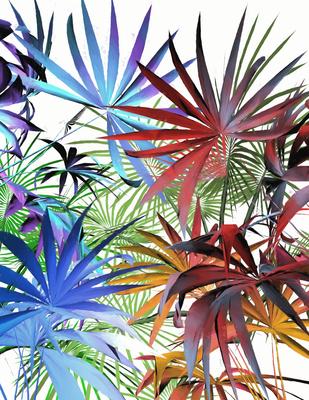 Folhagem Tropical 17