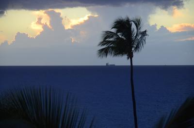 Maui 1, Havaí